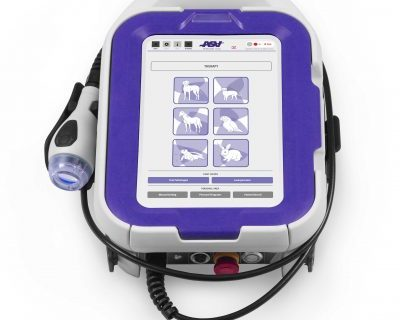M-Vet Therapy Laser