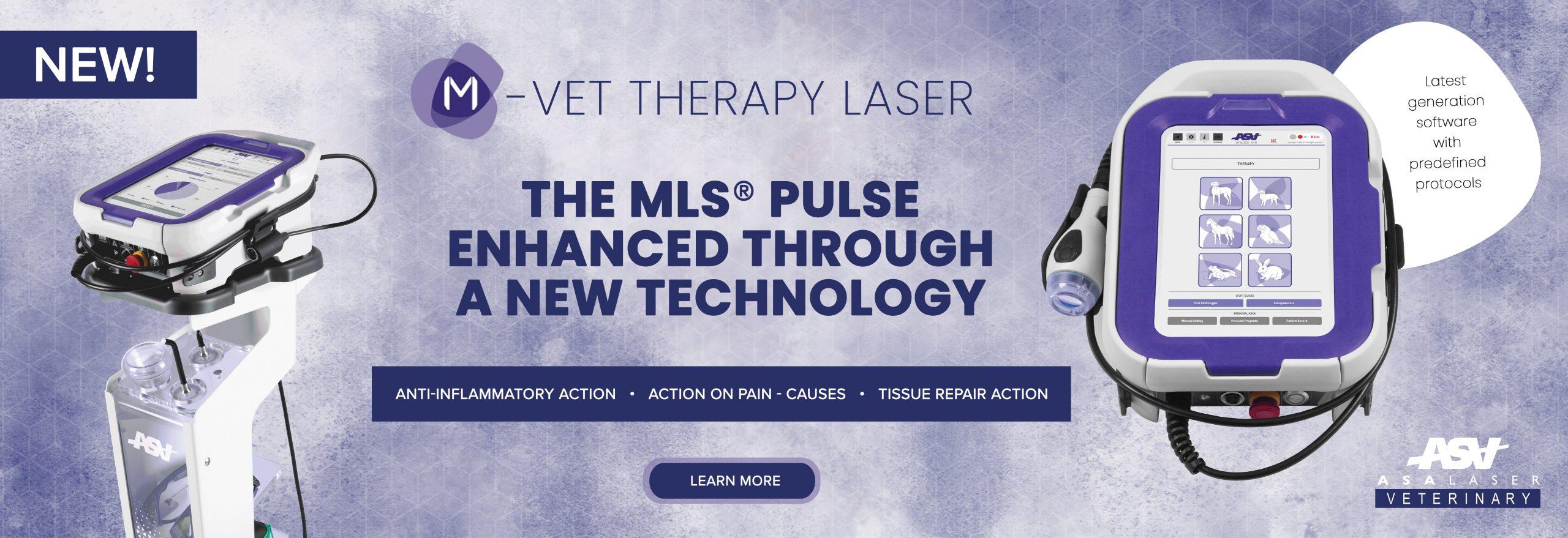 M Vet Website Banner Imag